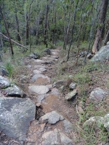 Eugenia circuit  heading towards Simpson Falls