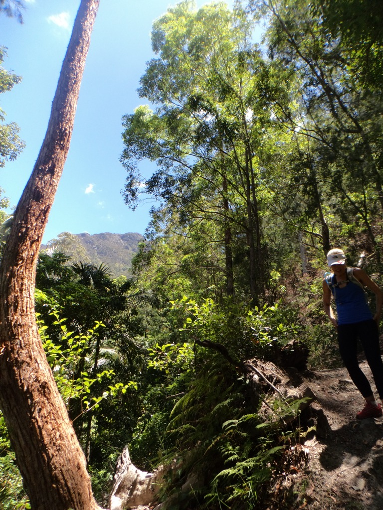 Delina Rahmate descending Mt Barney 2