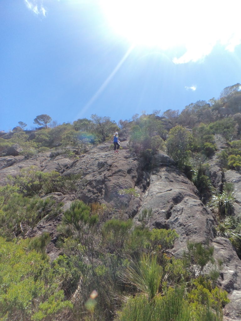 Delina Rahmate descending Mt Barney