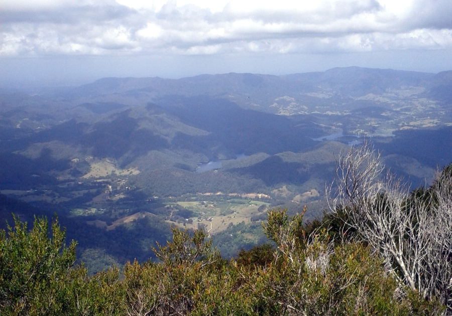 Ben_Duffus_view_Mt_Warning